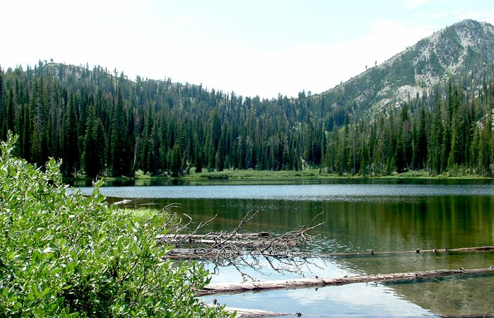 Things to do in Pine - Featherville Area, Idaho
